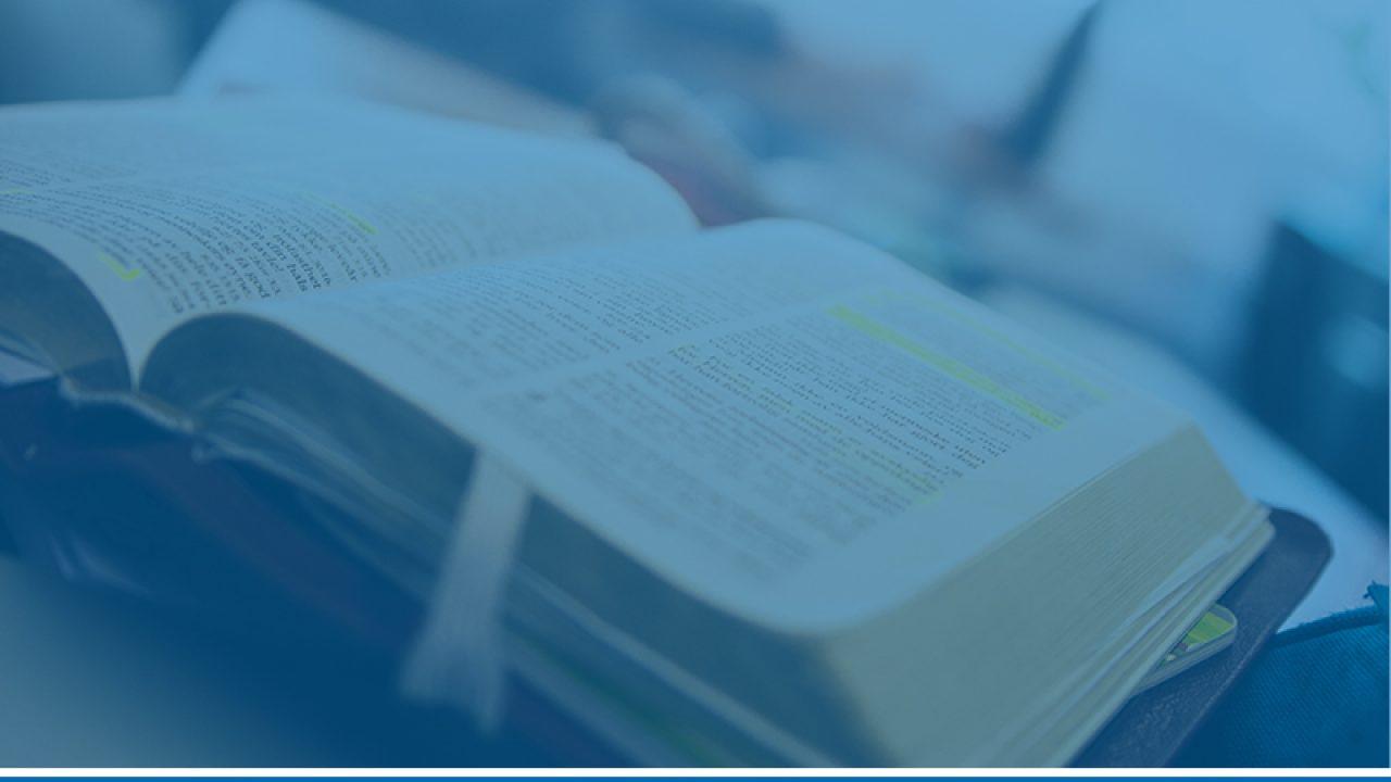 Bare bibel